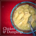 chicken dumplins