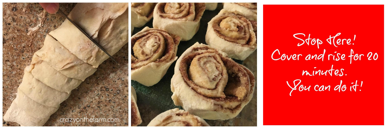 cinnamon roll 61